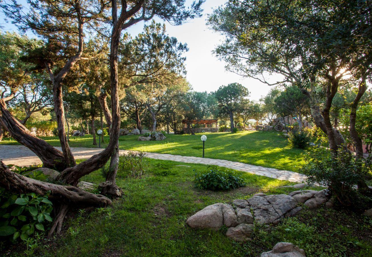 Villa a Porto Rotondo - Villa Sa Jaga: piscina a sfioro sul tramonto di Porto Rotondo | Klodge