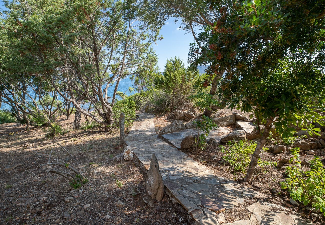Villa in Golfo Aranci - Villa Gea: villa beachfront, 10 guests, wifi and garden | Klodge