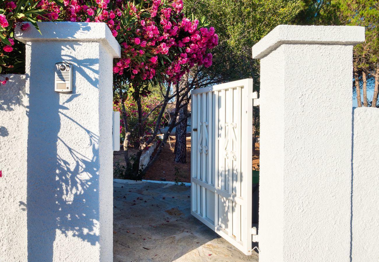 Villa in Olbia - Villa Miriam: 6 guests, pied dans l'eau, Pittulongu  |Klodge