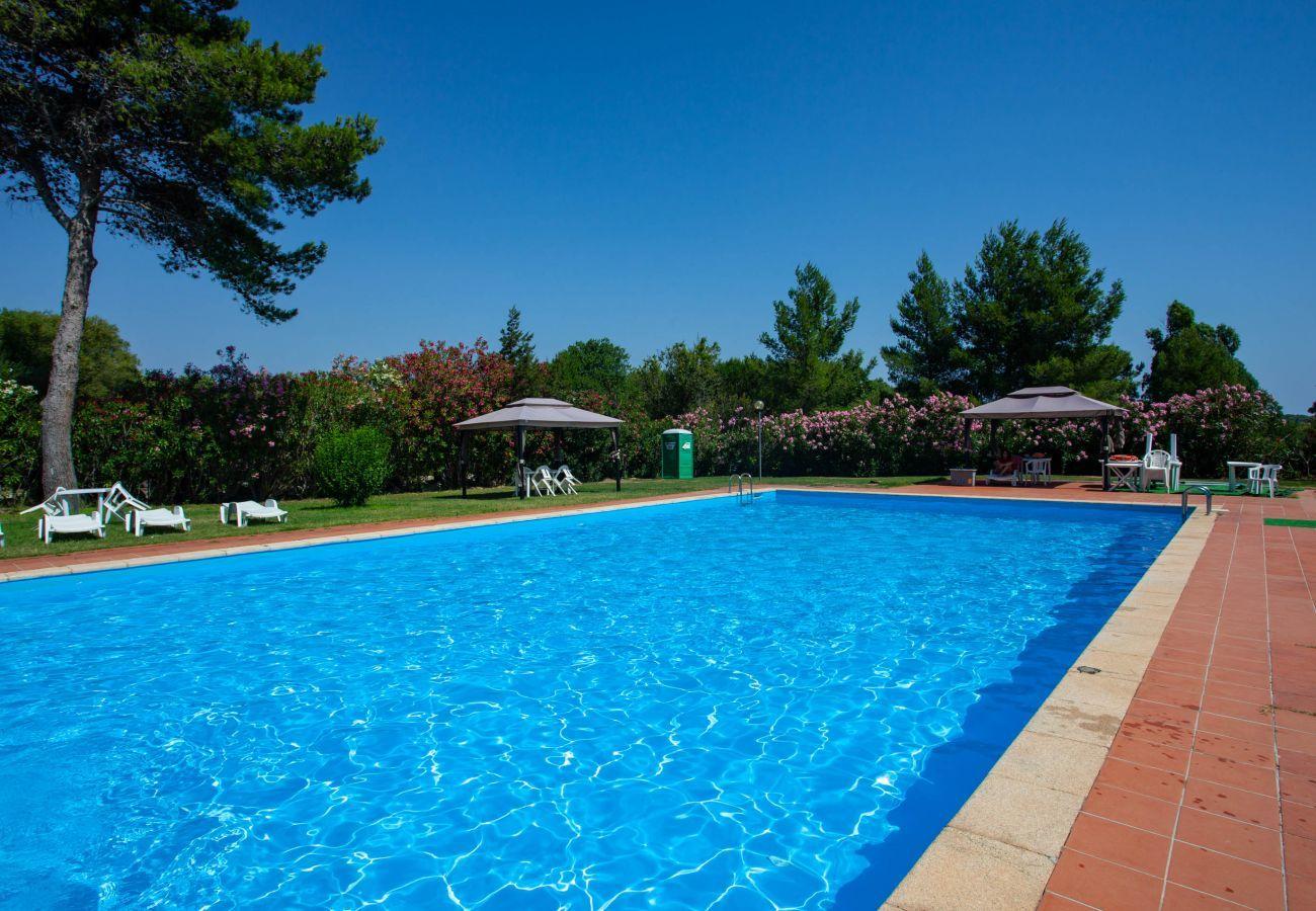 Apartment in Porto Rotondo - Klodge | Caletta 16: 4 guests, swimming pool, tennis court