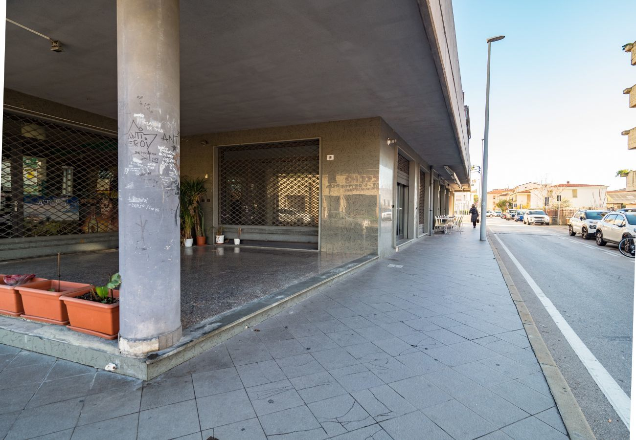 Commercial space in Olbia - Commercial space Olbia, 3 windows, facing main street