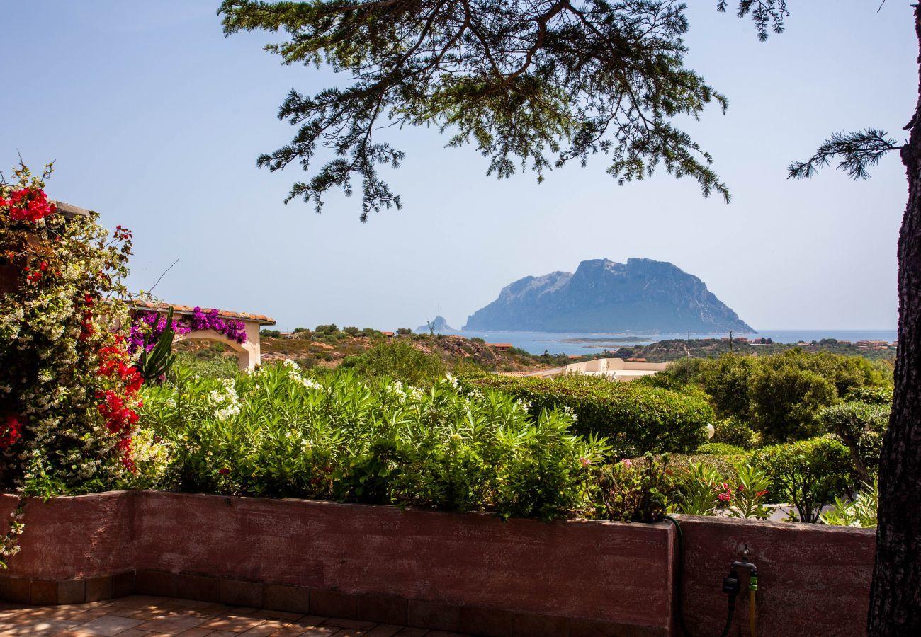 Villa à Olbia - Klodge   Villa Kalè à Costa Corallina: 6pax, wifi, vue imprenable